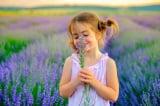 Hạnh phúc thật sự tới từ trái tim bình hòa