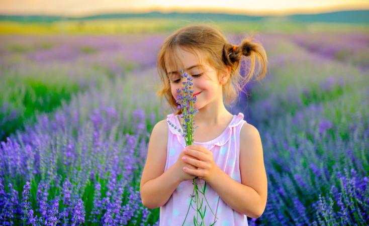 Cuộc sống đơn giản là cuộc sống hạnh phúc
