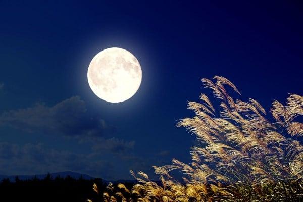 trung thu, Nghi lễ ngắm trăng tại đất nước mặt trời mọc