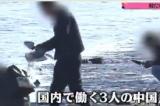 Nhặt hàu tại Nhật, du khách Trung Quốc để lại hơn 100 tấn vỏ