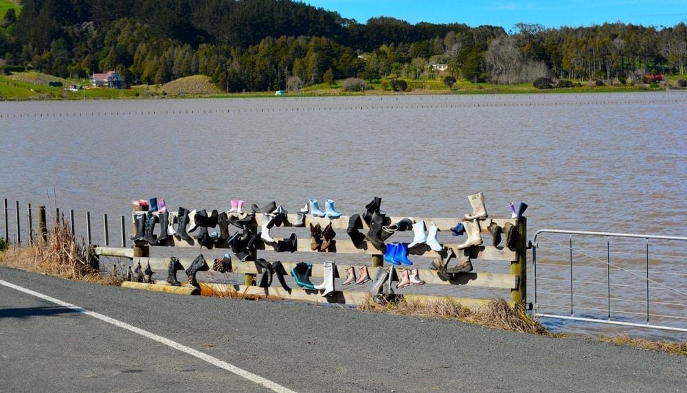 Treo rác lên hàng rào: Phong cách trang trí kỳ lạ của người New Zealand