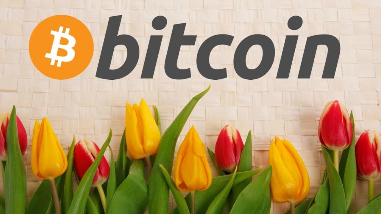Bitcoin có phải bong bóng