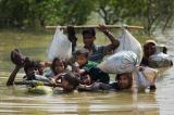người tị nạn, pin mặt trời, Người tị nạn Rohingya sống sót nhờ tấm năng lượng mặt trời