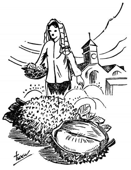 """Sài Gòn xưa: Chuyện trái """"Làu lình"""""""