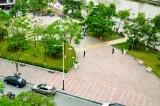 Công viên Tam Bạc