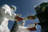 Mỹ: Bang Arizona kêu gọi hành động chống lại nạn mổ cướp nội tạng