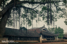 Đình làng xưa: Hồn quê đất Việt – P1 (Ảnh)