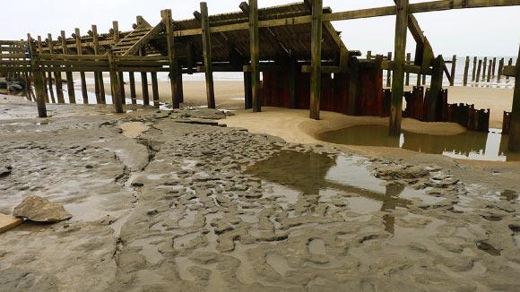 Dấu chân người hóa thạch 800.000 năm tuổi ở Anh