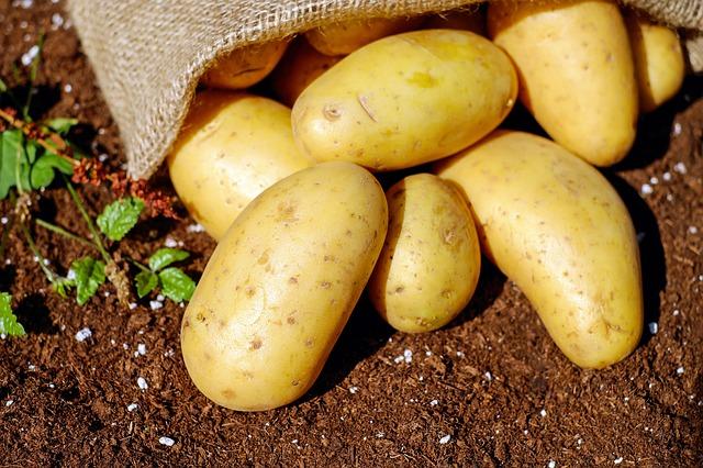 khoai tây, 5 lợi ích bất ngờ chất xơ mang đến cho chúng ta