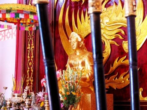 Nữ tướng Bùi Thị Xuân có bị voi giày?