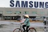 Samsung tại Việt Nam – Đôi bên cần có nhau