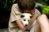 Suy ngẫm: Cậu bé và chú chó tật nguyền