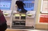 quạ cướp thẻ tín dụng