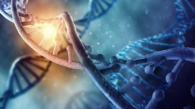 Những nhược điểm tố cáo nguồn gốc con người không đến từ Trái Đất