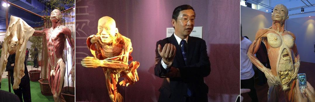 Hai ngành công nghiệp giết mổ người của Trung Quốc