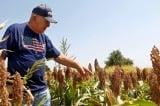 Thẩm phán ra lệnh tạm dừng gói cứu trợ nông dân của chính quyền Biden