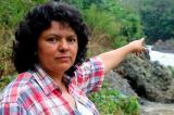 Bốn nhà hoạt động vì môi trường đang bị giết hại mỗi tuần