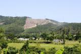 Thanh tra toàn diện việc sử dụng đất rừng tại Sóc Sơn