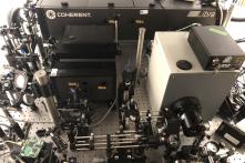 Máy ảnh 10 nghìn tỷ khung hình/giây: Chụp ảnh ánh sáng đang bay