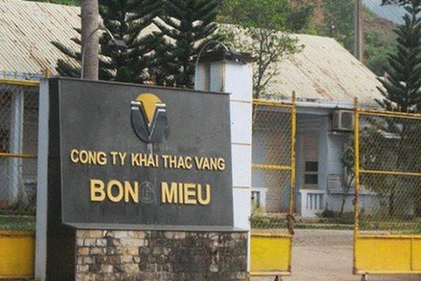 vang bong mieu