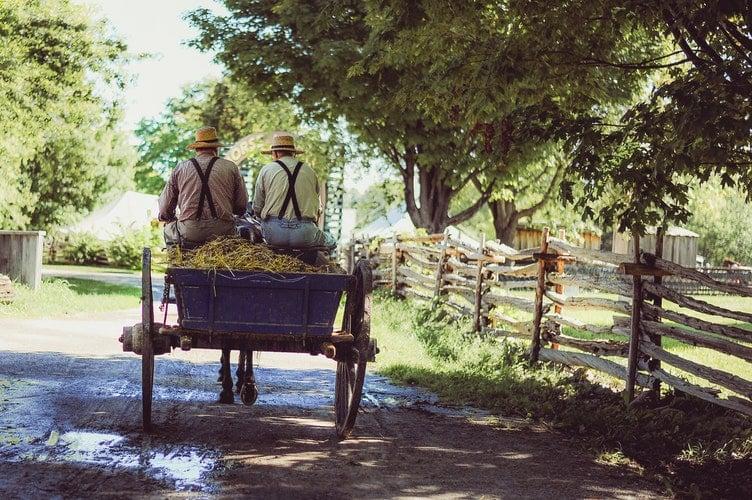 Câu chuyện về 2 anh em người nông dân