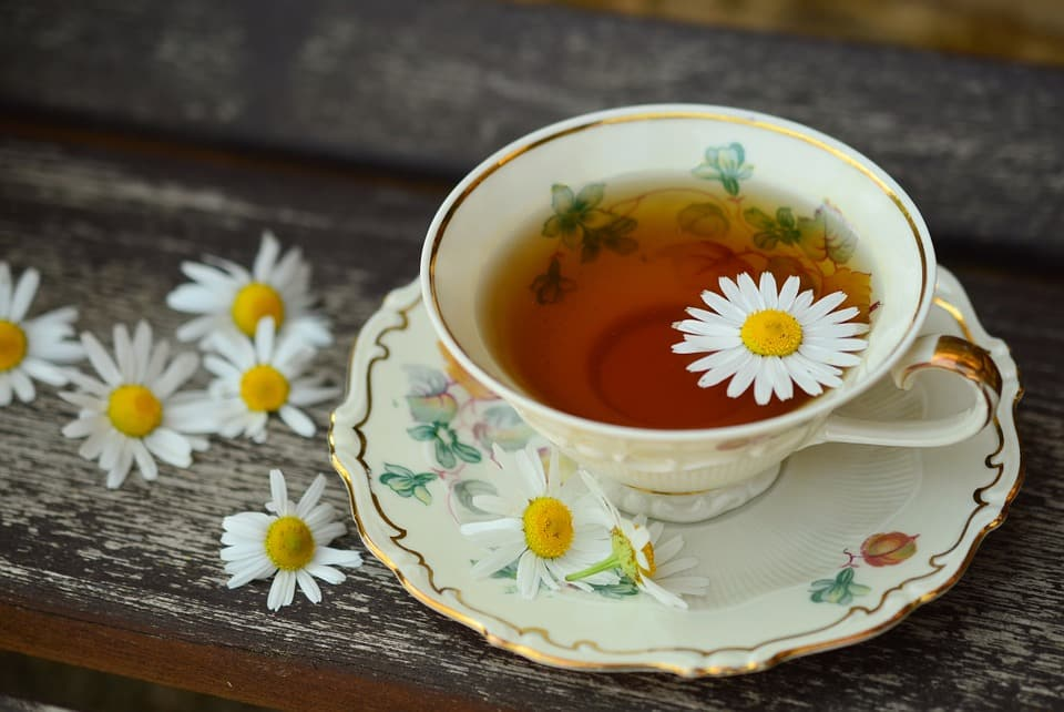 trà trắng, uống trà, trà xanh