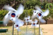 'Kỳ tích sông Hàn' nhìn từ Giáo dục