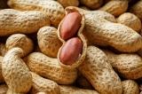 5 loại thực phẩm giúp bổ thận dành cho nam giới