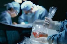 Forbes: Cần điều tra đến cùng tội ác thu hoạch nội tạng tại TQ