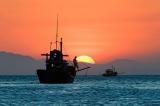 Từ Trướng Hải đến biển Giao Chỉ, chứng minh chủ quyền Việt Nam trên Biển Đông