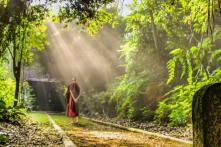 """""""Thuận theo tự nhiên"""" là cách sống của người trí tuệ"""