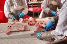 Bộ Công Thương: Có thể nhập khẩu thịt lợn nếu nguồn cung thiếu vì bệnh dịch