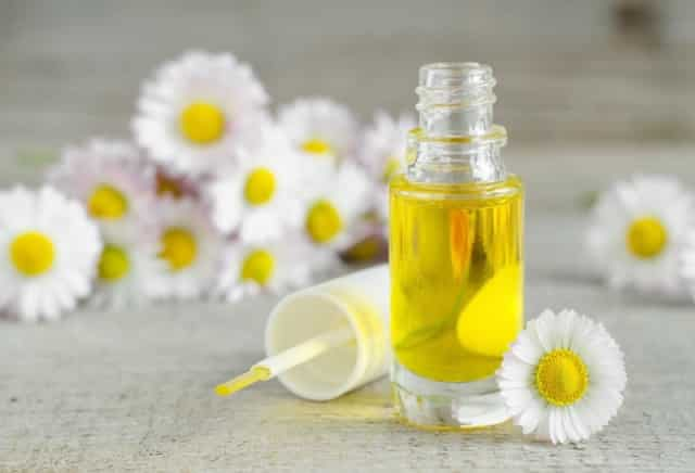 6 loại tinh dầu có tác dụng kháng khuẩn cực tốt