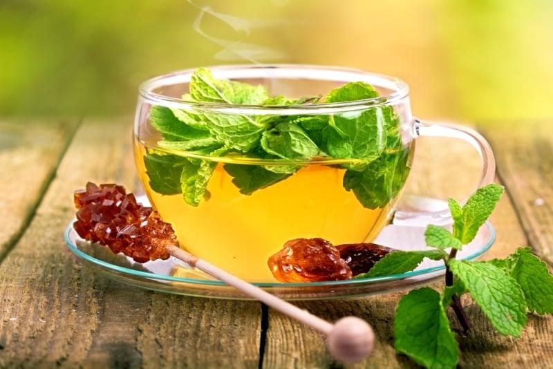 5 loại trà thảo dược rất tốt cho sức khỏe của bạn, Trà bạc hà, thảo mộc