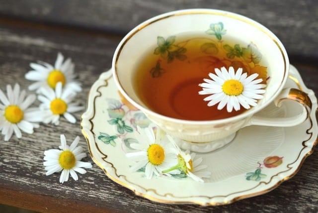 5 loại trà thảo dược, trà thảo mộc, trà, loại trà tốt cho sức khỏe