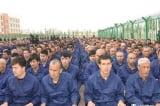 TQ kêu gọi các thành viên LHQ không tham dự sự kiện nhân quyền Tân Cương