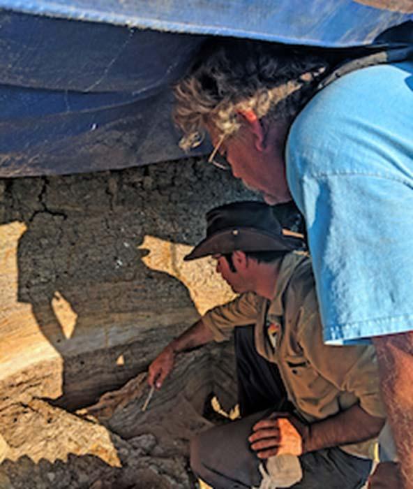 Kho hóa thạch kể lại diễn biến vụ thiên thạch rơi 66 triệu năm trước