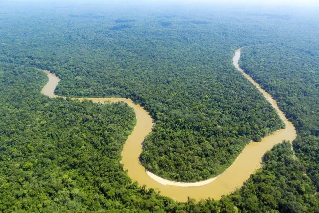 Bộ lạc Amazon thắng kiện chính phủ, cứu 3 triệu mẫu rừng mưa nhiệt đới