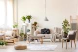 9 cách tạo không khí trong lành trong nhà mà không cần dùng hóa chất