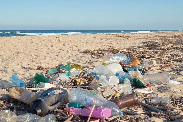 cấm rác thải nhựa