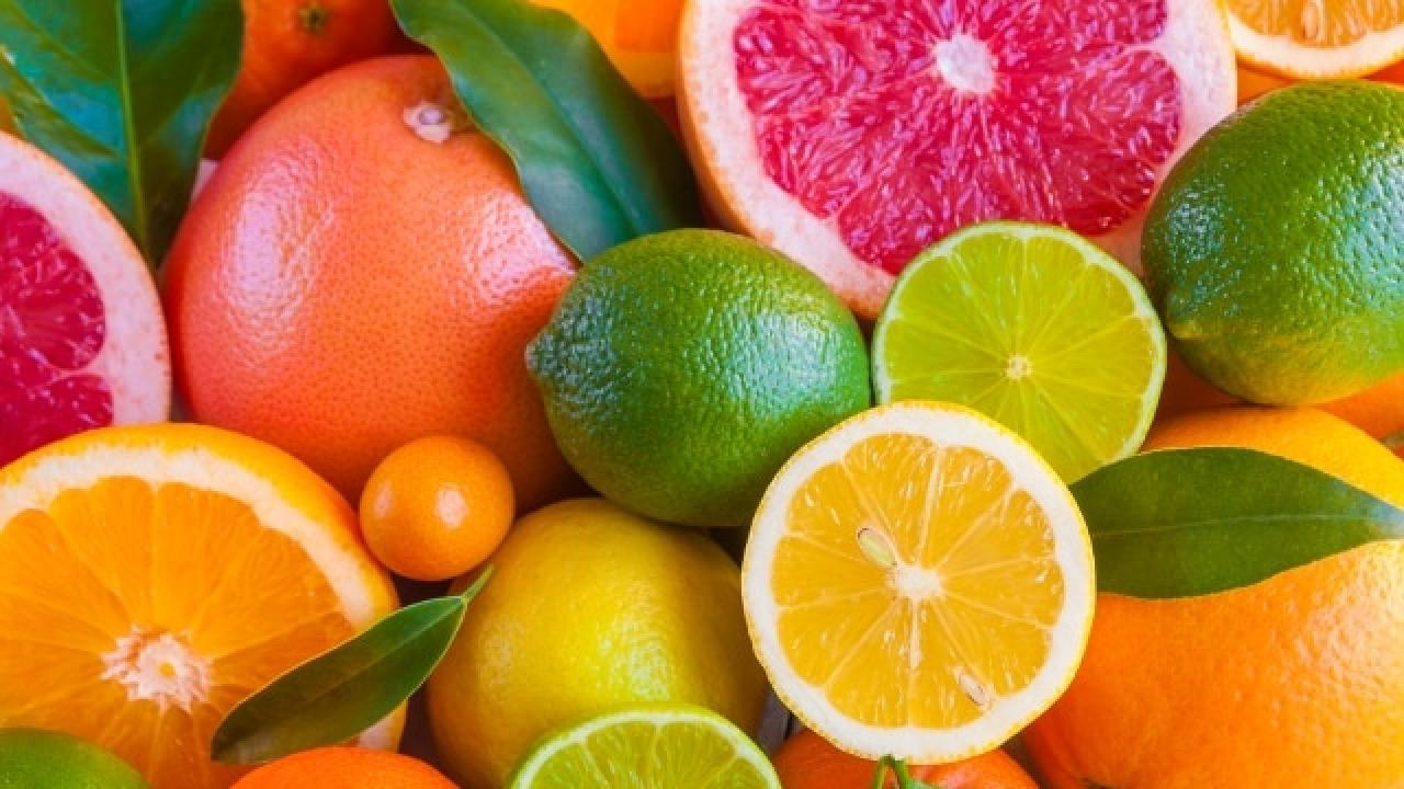 Điều gì khiến trái cây họ cam quýt là lựa chọn số 1 trong mùa hè? - Trí  Thức VN