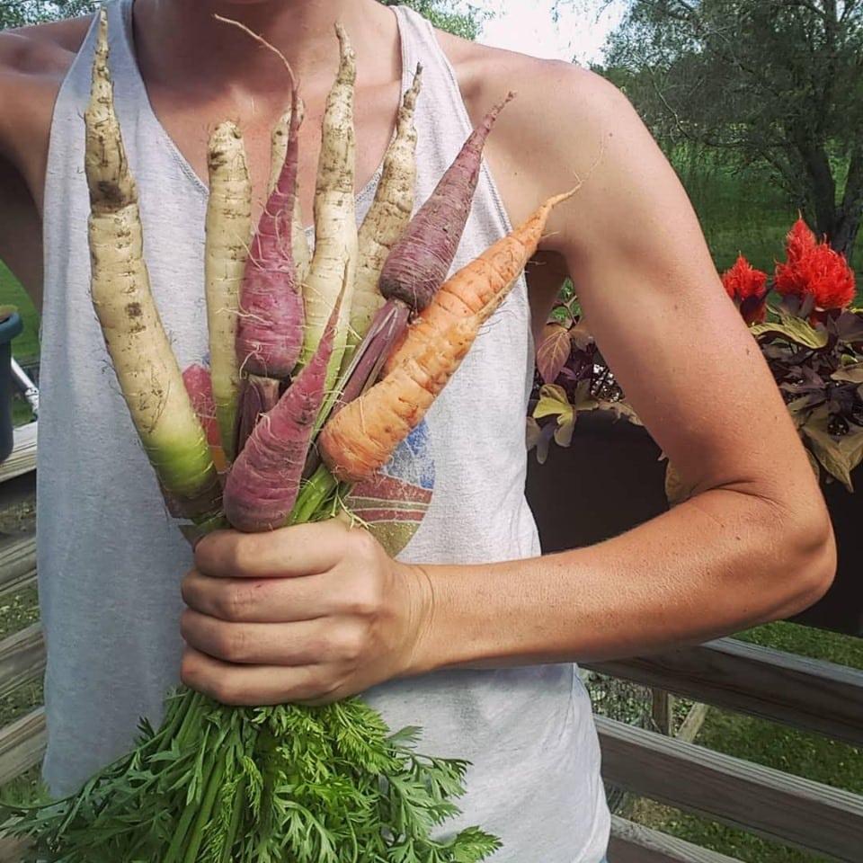 vườn rau sạch, rau sạch