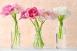 Làm cách nào để giữ hoa đã cắt tươi lâu hơn?
