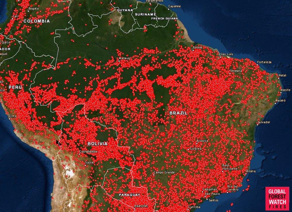 Không chỉ cháy rừng ở Amazon, cả Nam Mỹ đang phải chống chọi với lửa
