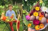 Mảnh vườn đẹp như tranh của chàng trai 18 tuổi