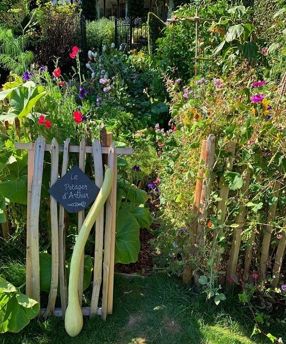 làm vườn, trồng rau