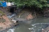 ô nhiễm nguồn nước, ung thư