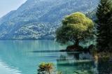 hồ nước trong vắt