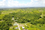 Vườn rừng sinh thái