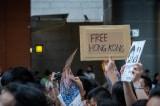 Free Hong Kong, Biểu tình Hồng Kông,Dư luận viên